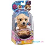 OMG Pets: OMG Poodles/ Golden retriever kiskutya